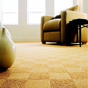 Some Benefits of Carpeting